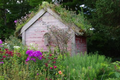 A unique garden shed by Kathy Helland