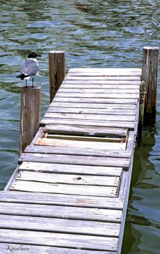 A new take on an old dock in Rockport by Kathy Thalman