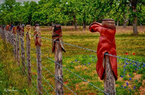 Boots on a fence by Kathy Thalman