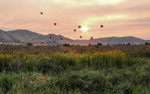 Rising with the Sun by Anita Freeman